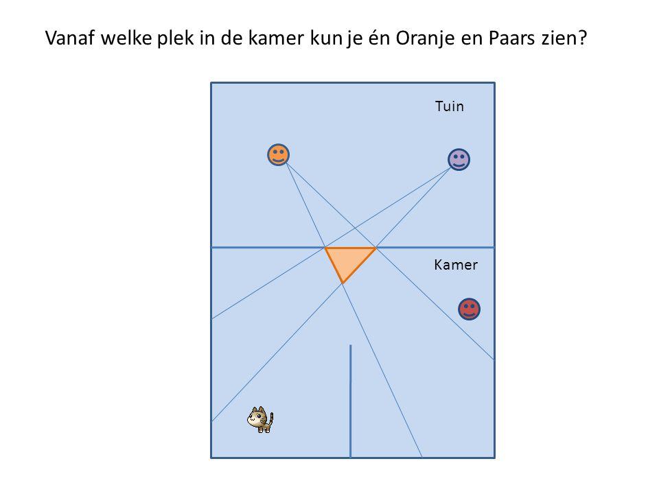 Vanaf welke plek in de kamer kun je én Oranje en Paars zien