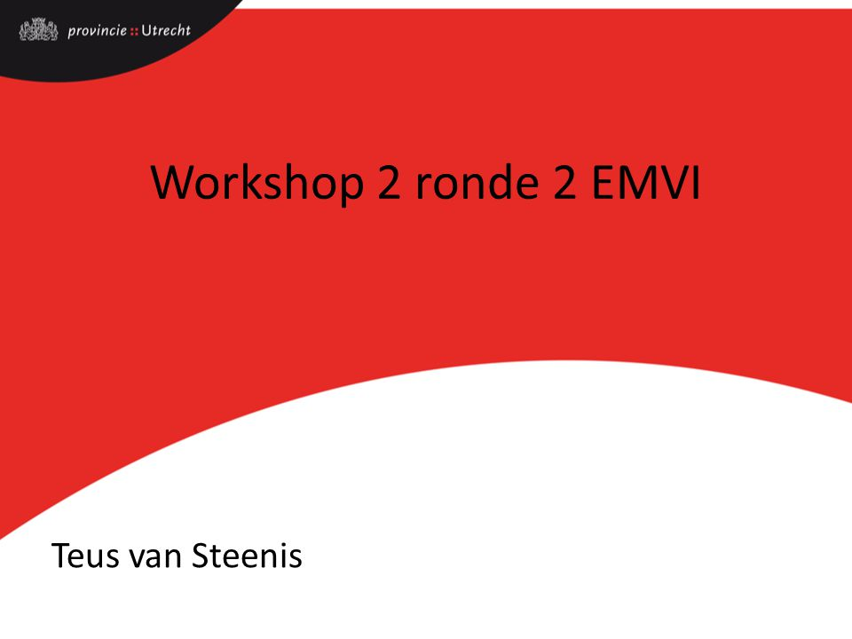 Workshop 2 ronde 2 EMVI Teus van Steenis