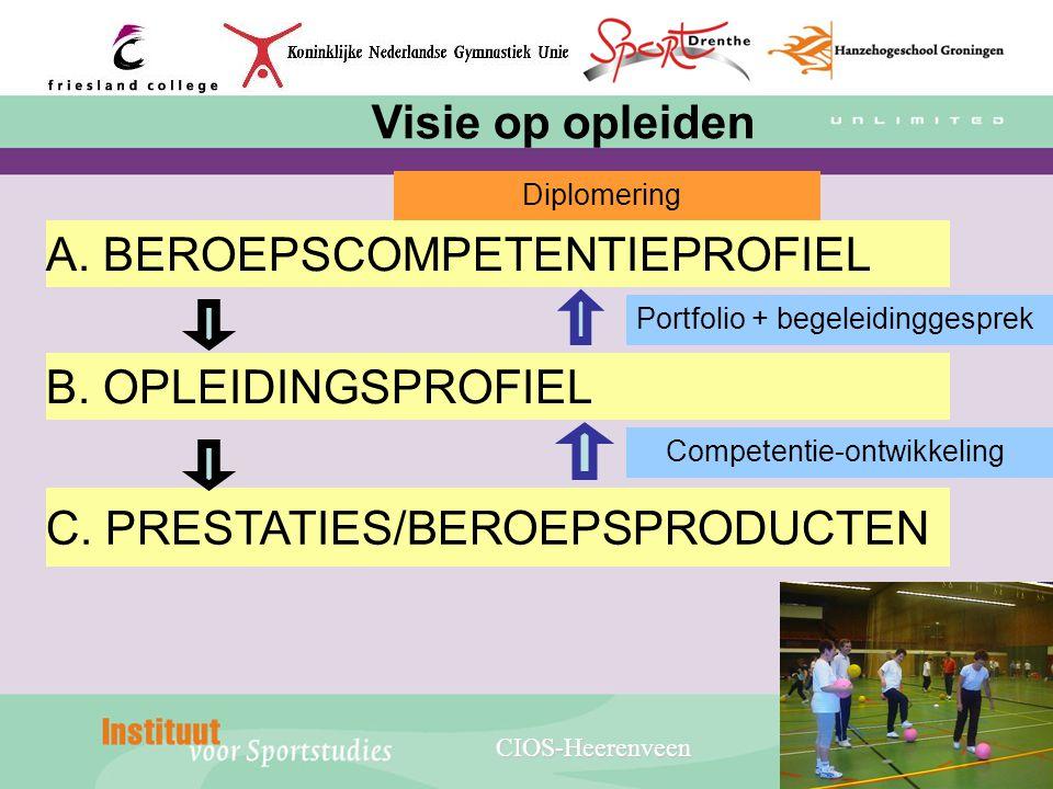 C. PRESTATIES/BEROEPSPRODUCTEN B. OPLEIDINGSPROFIEL
