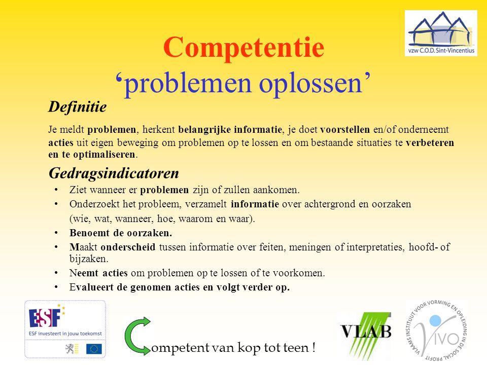Competentie 'problemen oplossen'