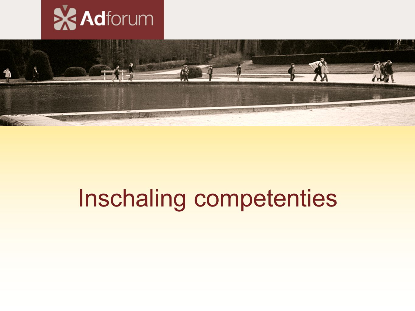 Inschaling competenties