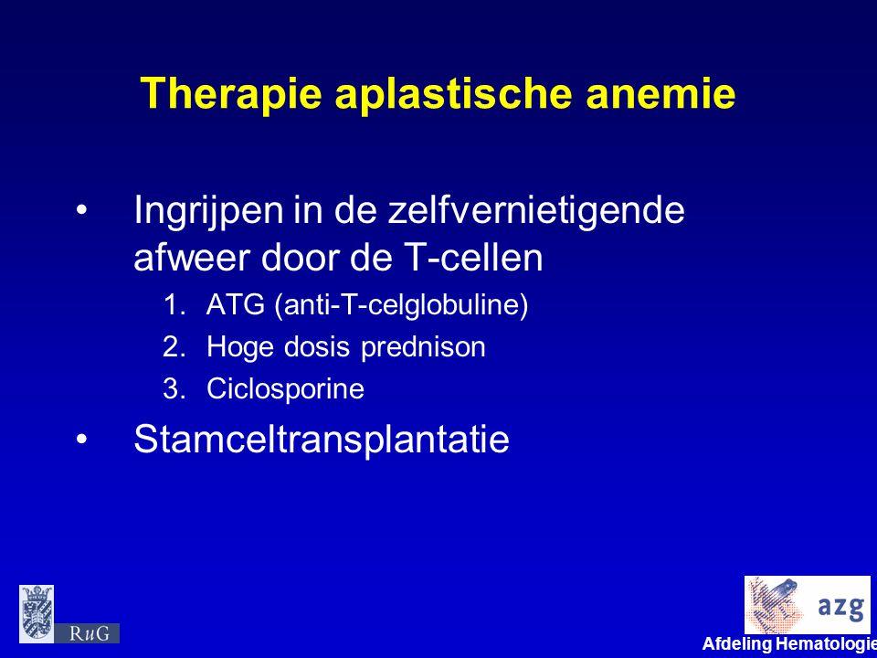 Therapie aplastische anemie