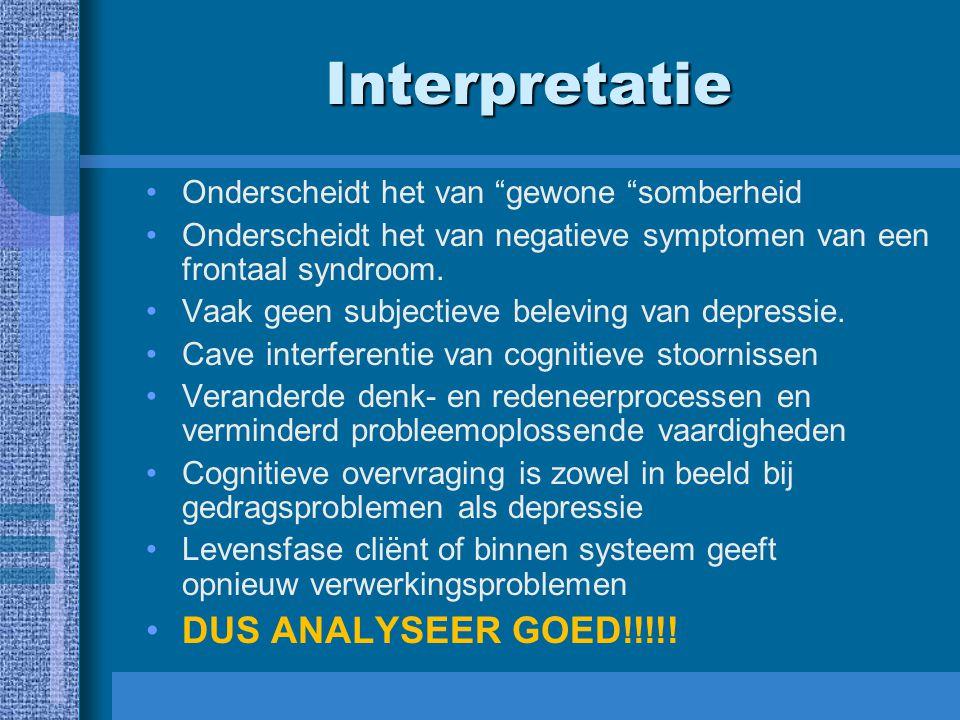 Interpretatie DUS ANALYSEER GOED!!!!!