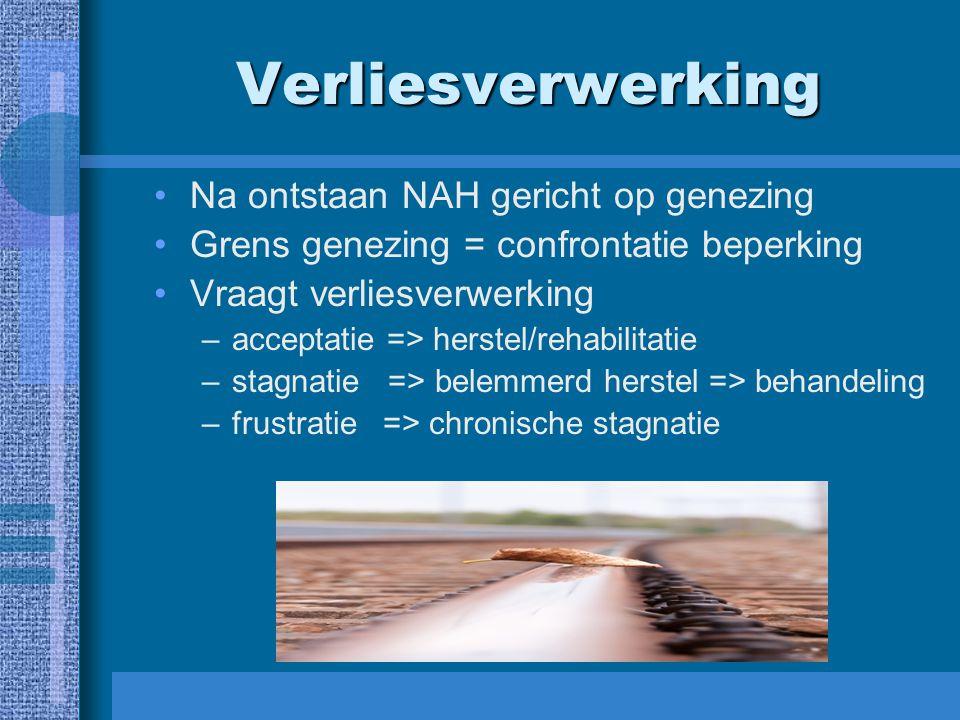 Verliesverwerking Na ontstaan NAH gericht op genezing