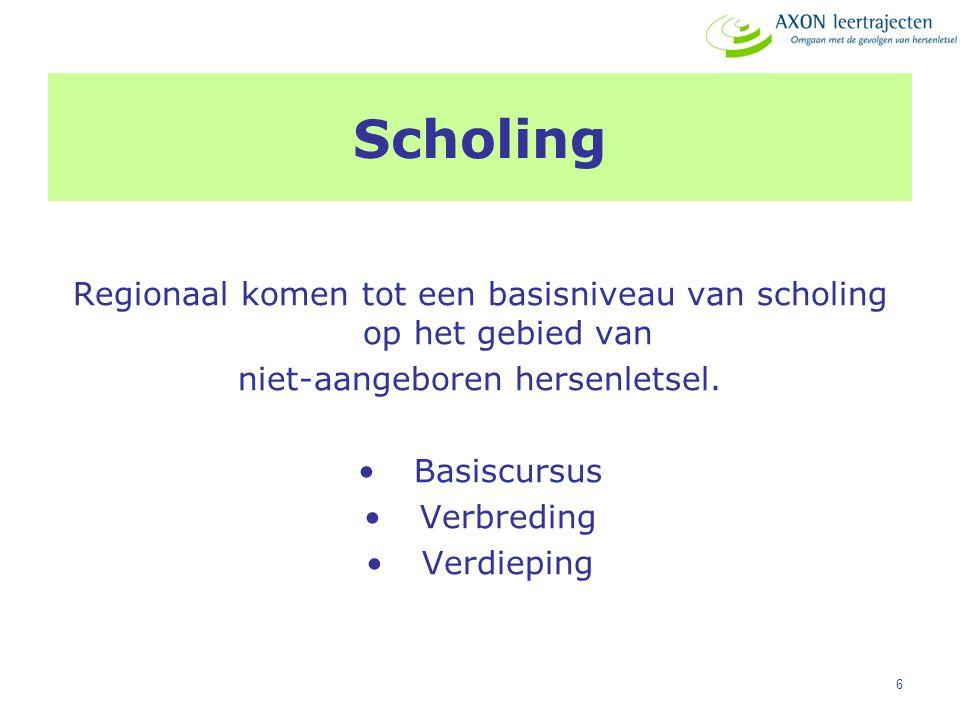 Scholing Regionaal komen tot een basisniveau van scholing op het gebied van. niet-aangeboren hersenletsel.
