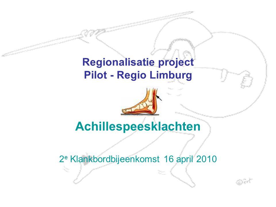 Regionalisatie project Pilot - Regio Limburg