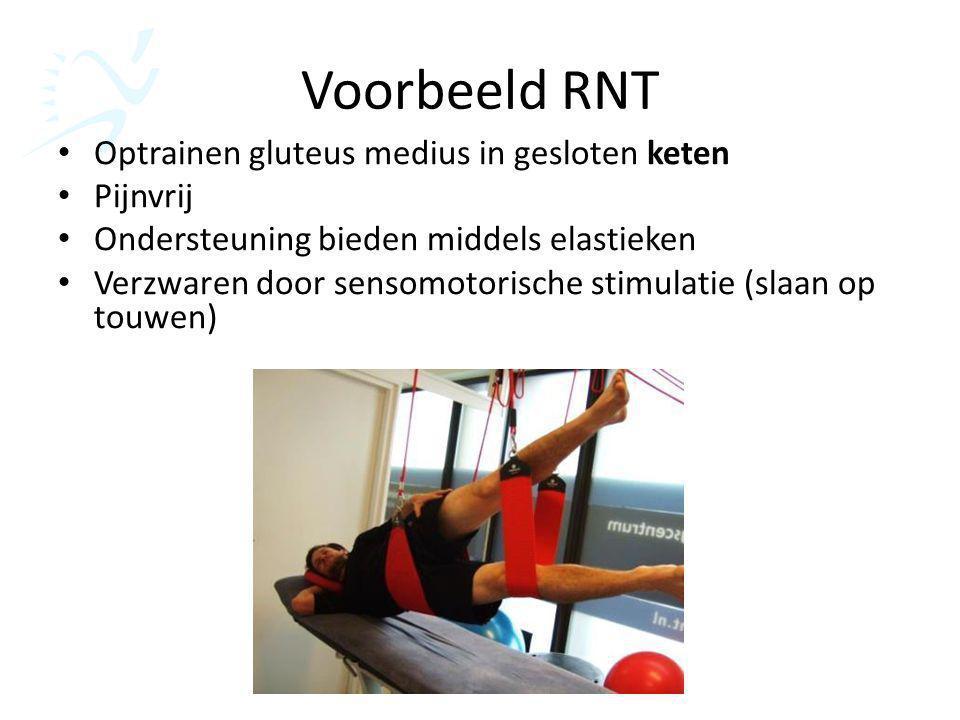 Voorbeeld RNT Optrainen gluteus medius in gesloten keten Pijnvrij