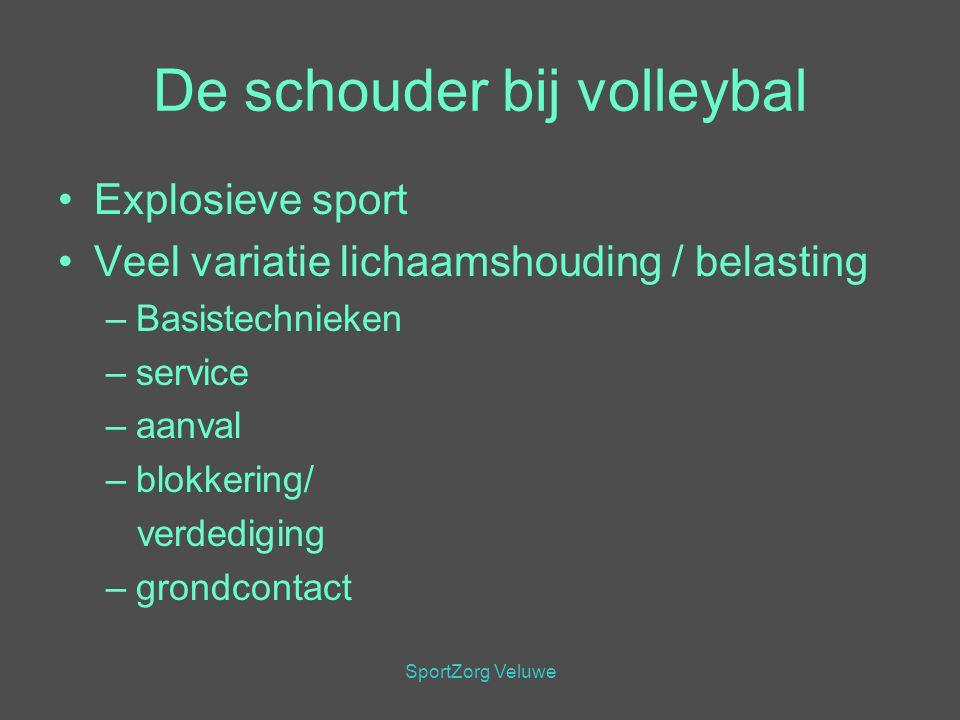 De schouder bij volleybal