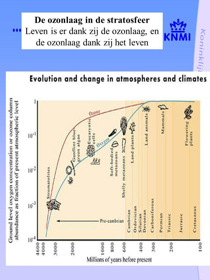 De ozonlaag in de stratosfeer