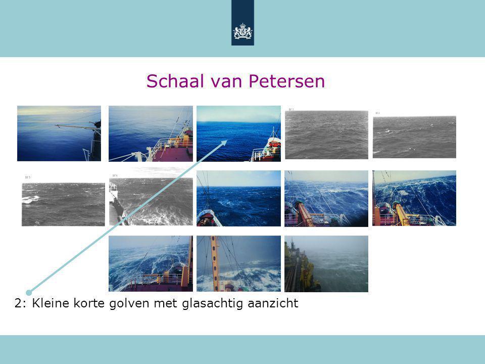 Schaal van Petersen 2: Kleine korte golven met glasachtig aanzicht