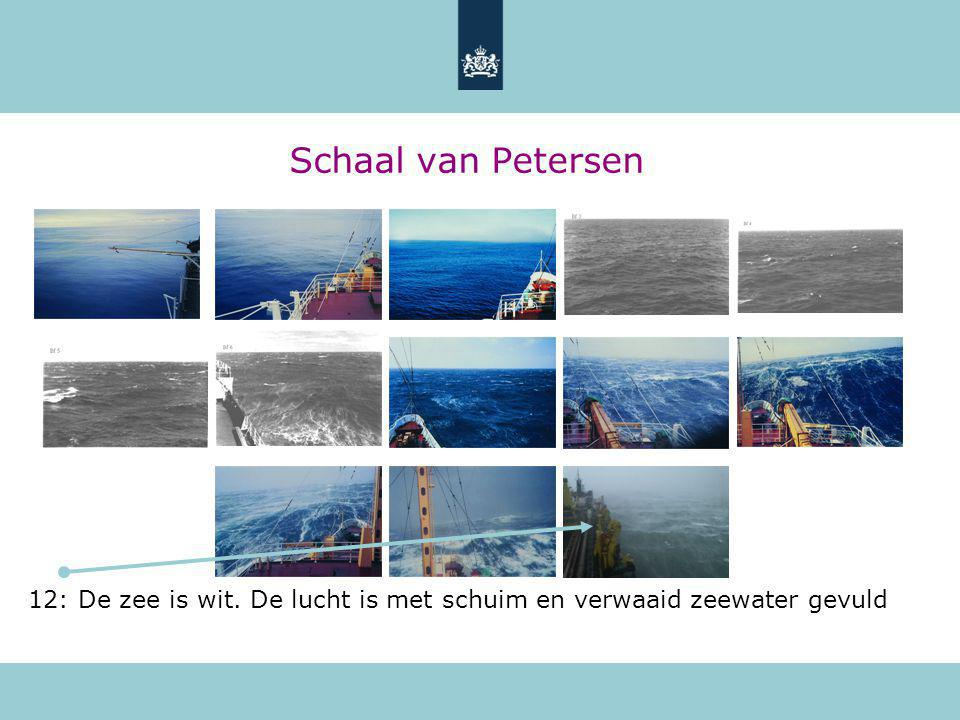 Schaal van Petersen 12: De zee is wit. De lucht is met schuim en verwaaid zeewater gevuld