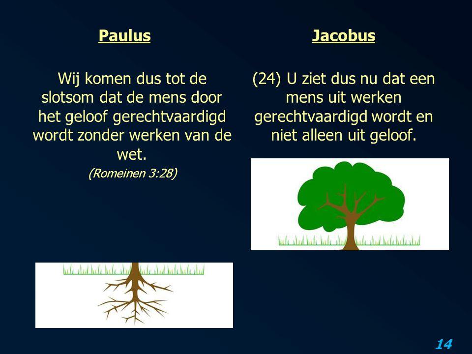 Paulus Jacobus. Wij komen dus tot de slotsom dat de mens door het geloof gerechtvaardigd wordt zonder werken van de wet.