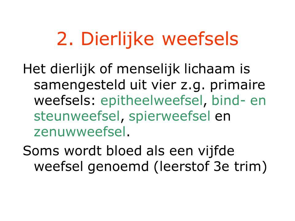 2. Dierlijke weefsels