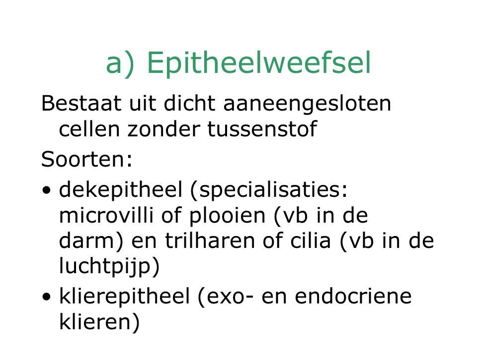 a) Epitheelweefsel Bestaat uit dicht aaneengesloten cellen zonder tussenstof. Soorten: