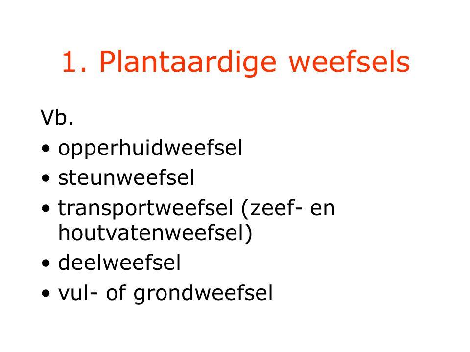 1. Plantaardige weefsels
