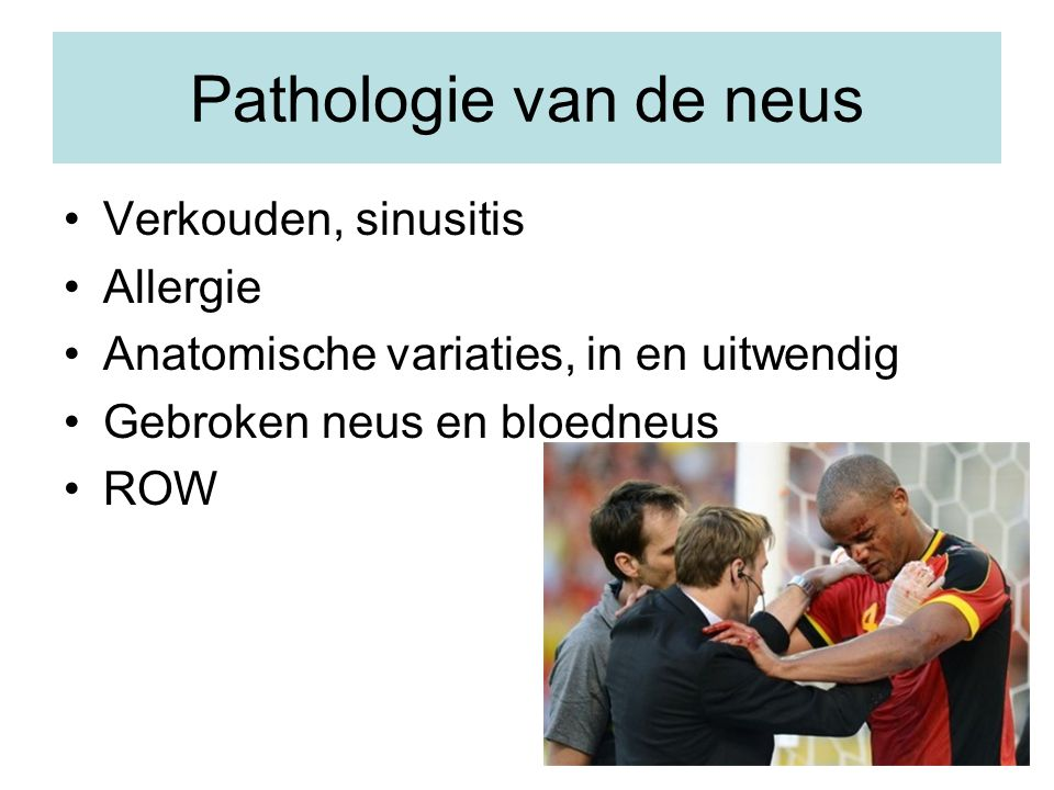 Pathologie van de neus Verkouden, sinusitis Allergie