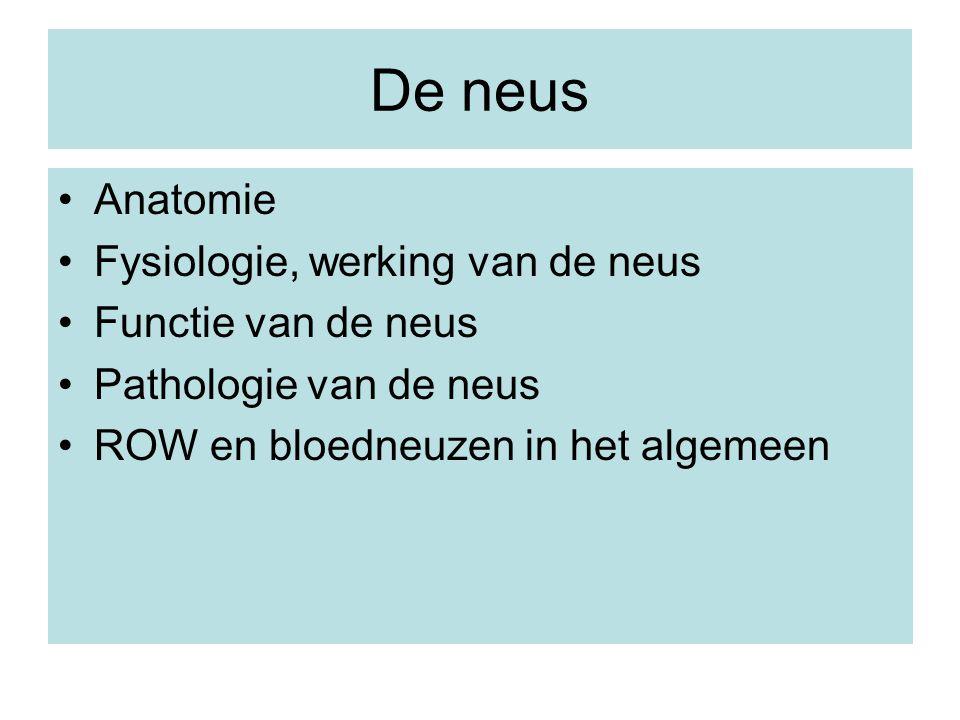 De neus Anatomie Fysiologie, werking van de neus Functie van de neus