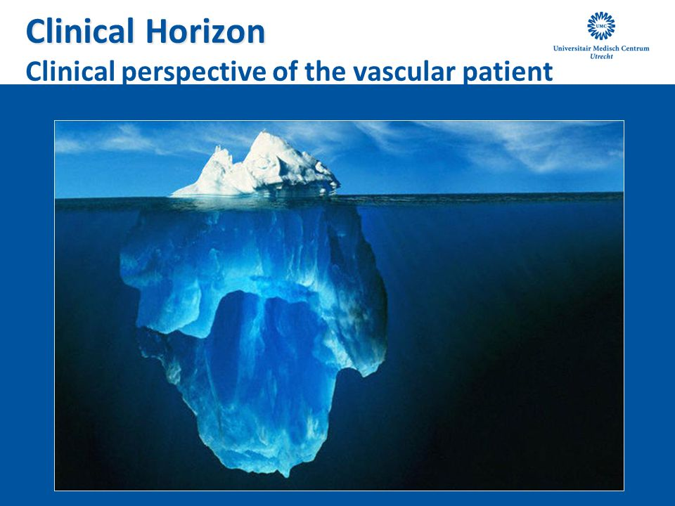 Clinical Horizon Clinical perspective of the vascular patient