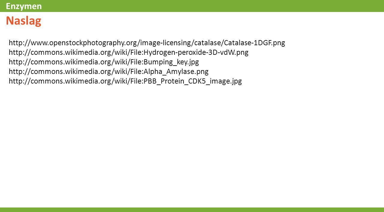 Naslag http://www.openstockphotography.org/image-licensing/catalase/Catalase-1DGF.png.