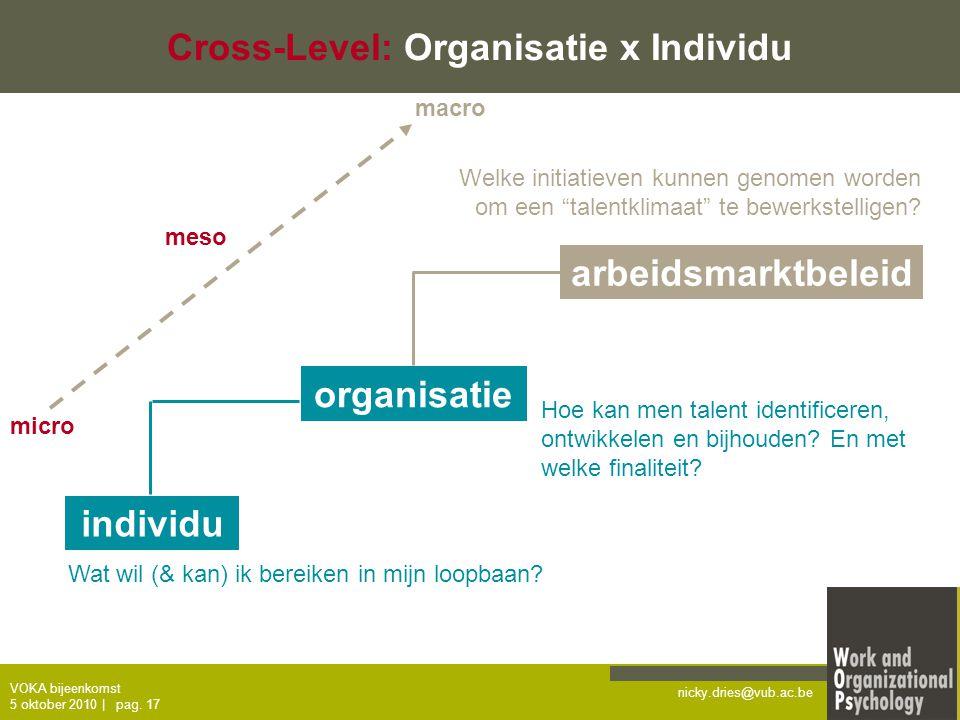 Cross-Level: Organisatie x Individu