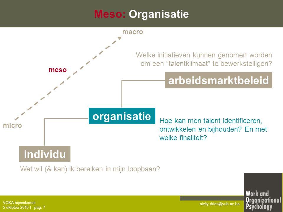 Meso: Organisatie arbeidsmarktbeleid organisatie individu