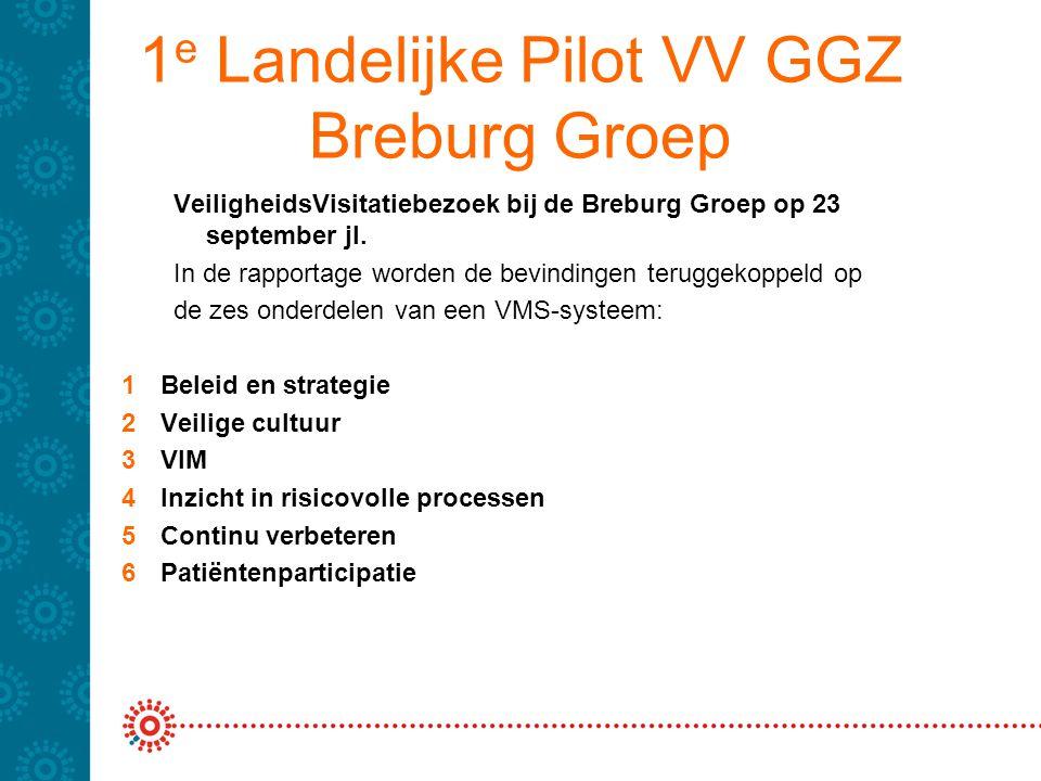 1e Landelijke Pilot VV GGZ Breburg Groep