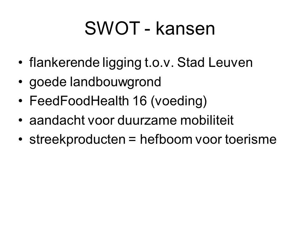 SWOT - kansen flankerende ligging t.o.v. Stad Leuven