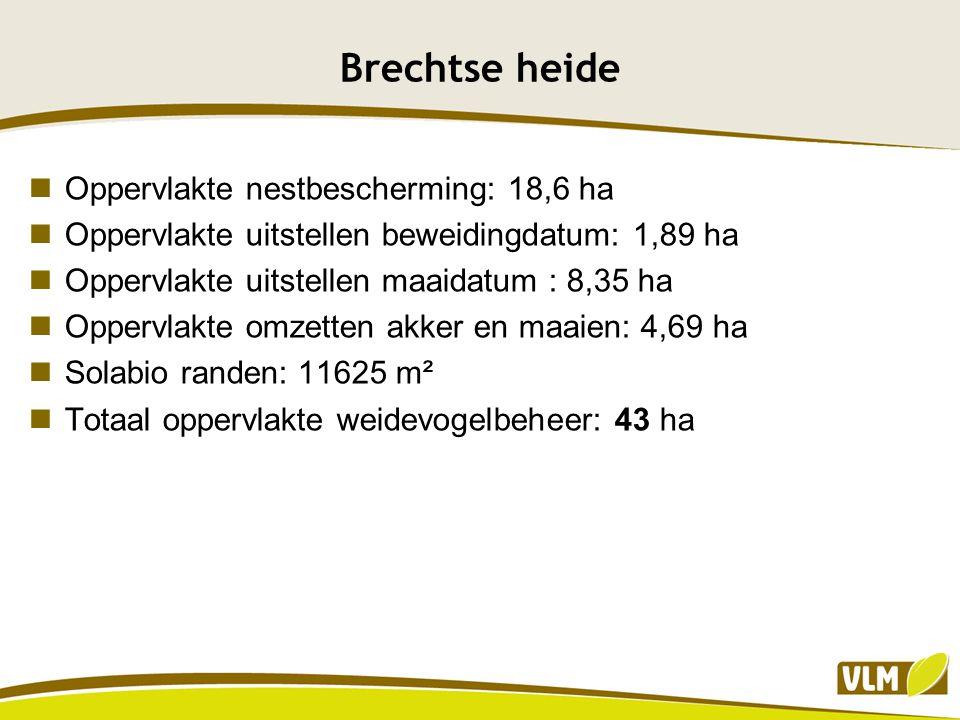 Brechtse heide Oppervlakte nestbescherming: 18,6 ha