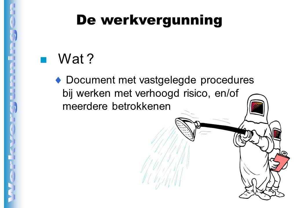 De werkvergunning Wat .