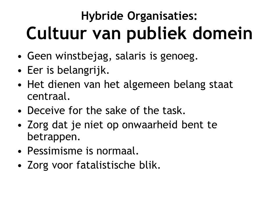 Hybride Organisaties: Cultuur van publiek domein