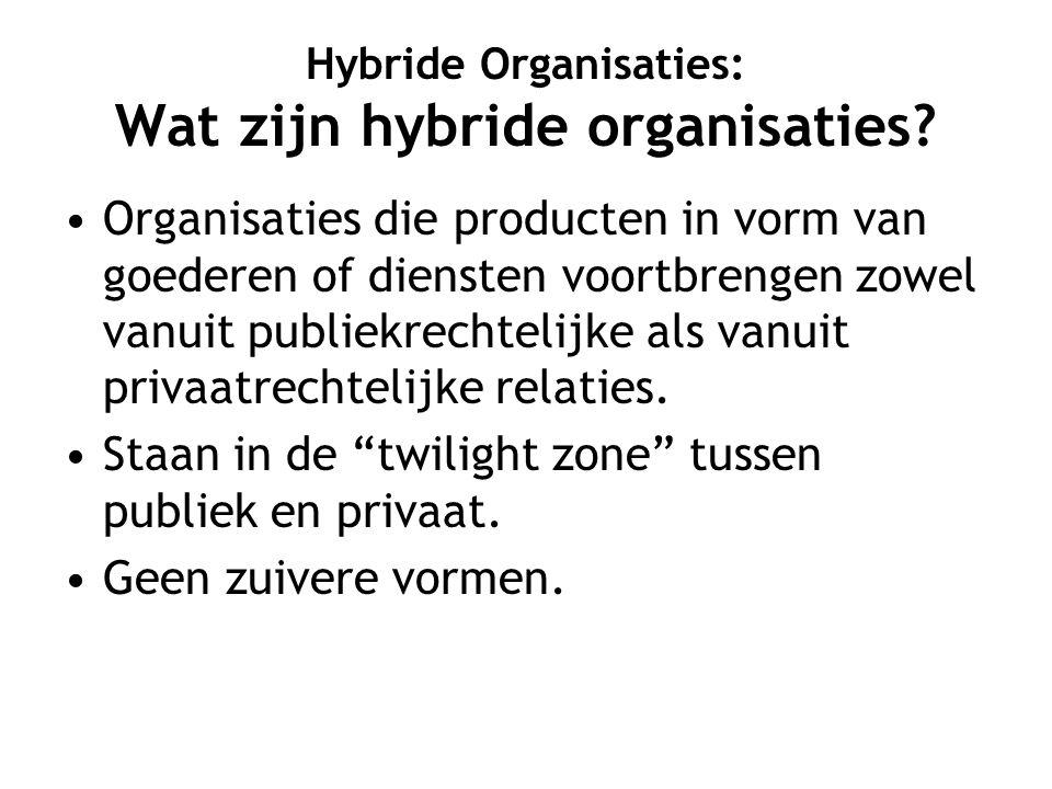 Hybride Organisaties: Wat zijn hybride organisaties