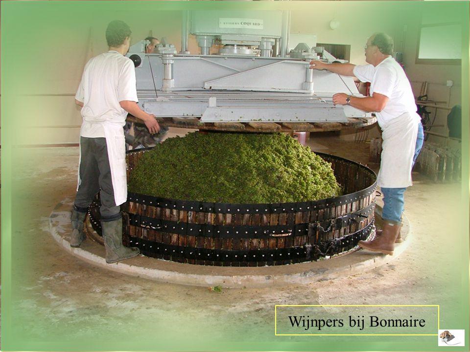 Wijnpers bij Bonnaire