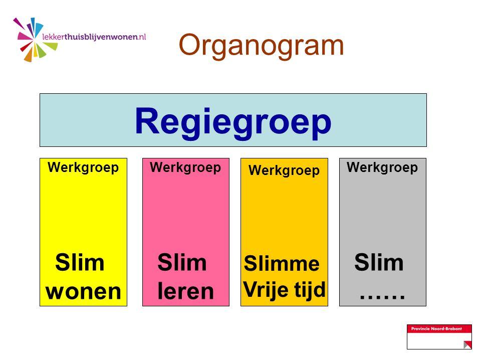 Regiegroep Organogram Slim wonen Slim leren Slim …… Slimme Vrije tijd
