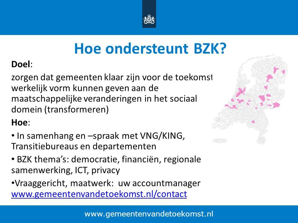 Hoe ondersteunt BZK Doel: