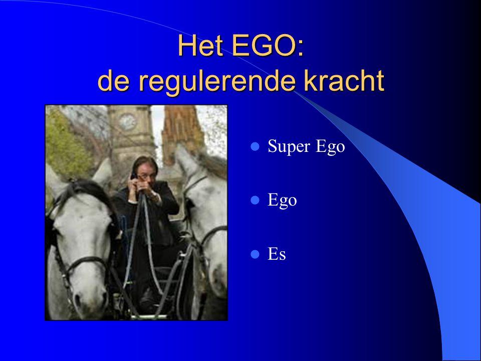 Het EGO: de regulerende kracht