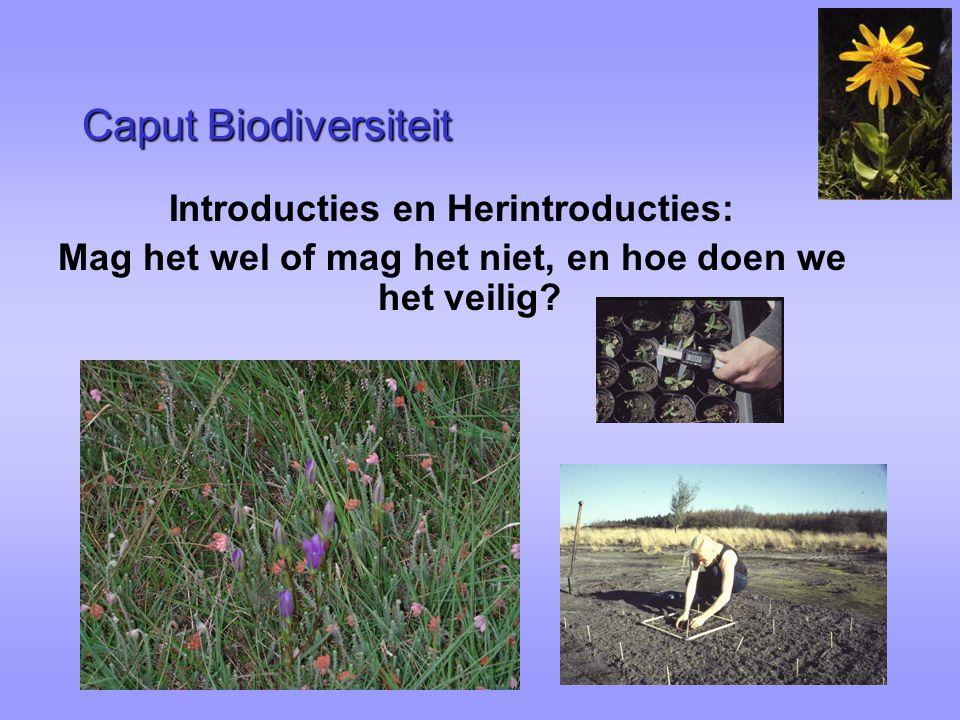 Caput Biodiversiteit Introducties en Herintroducties: