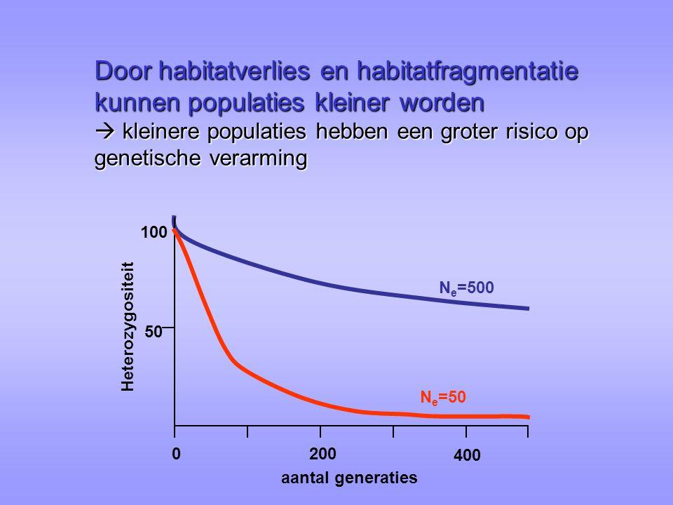 Door habitatverlies en habitatfragmentatie kunnen populaties kleiner worden  kleinere populaties hebben een groter risico op genetische verarming