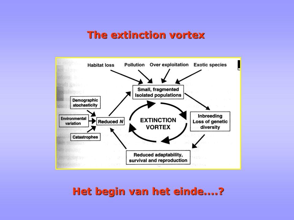 The extinction vortex Het begin van het einde....
