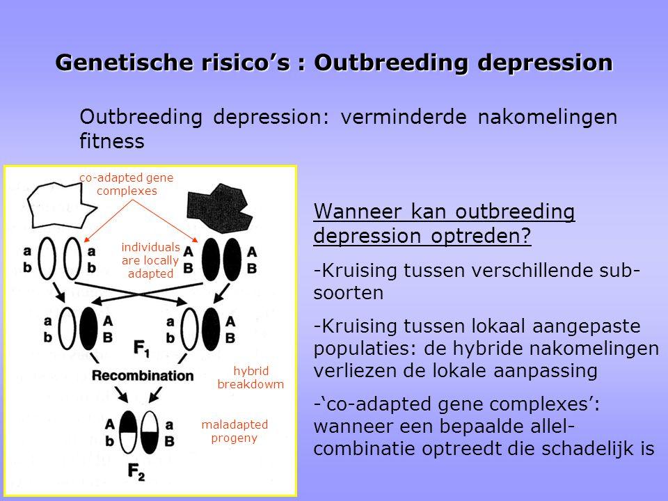Genetische risico's : Outbreeding depression