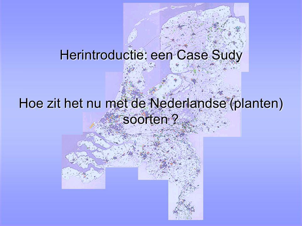 Herintroductie: een Case Sudy