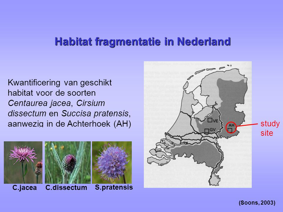 Habitat fragmentatie in Nederland
