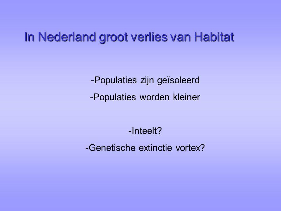 In Nederland groot verlies van Habitat