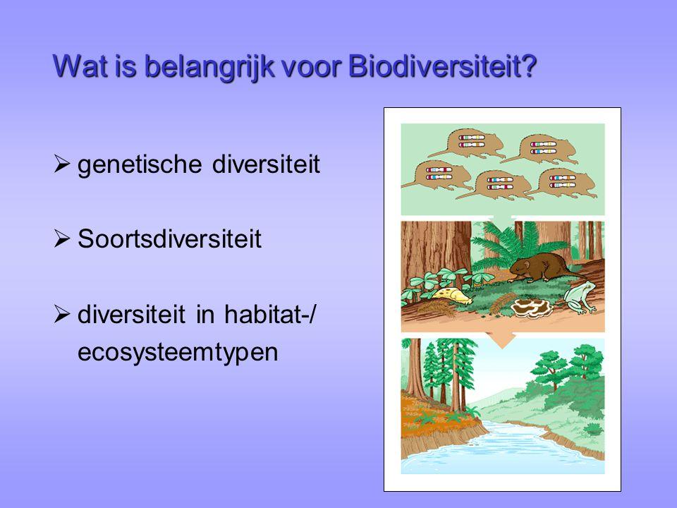 Wat is belangrijk voor Biodiversiteit