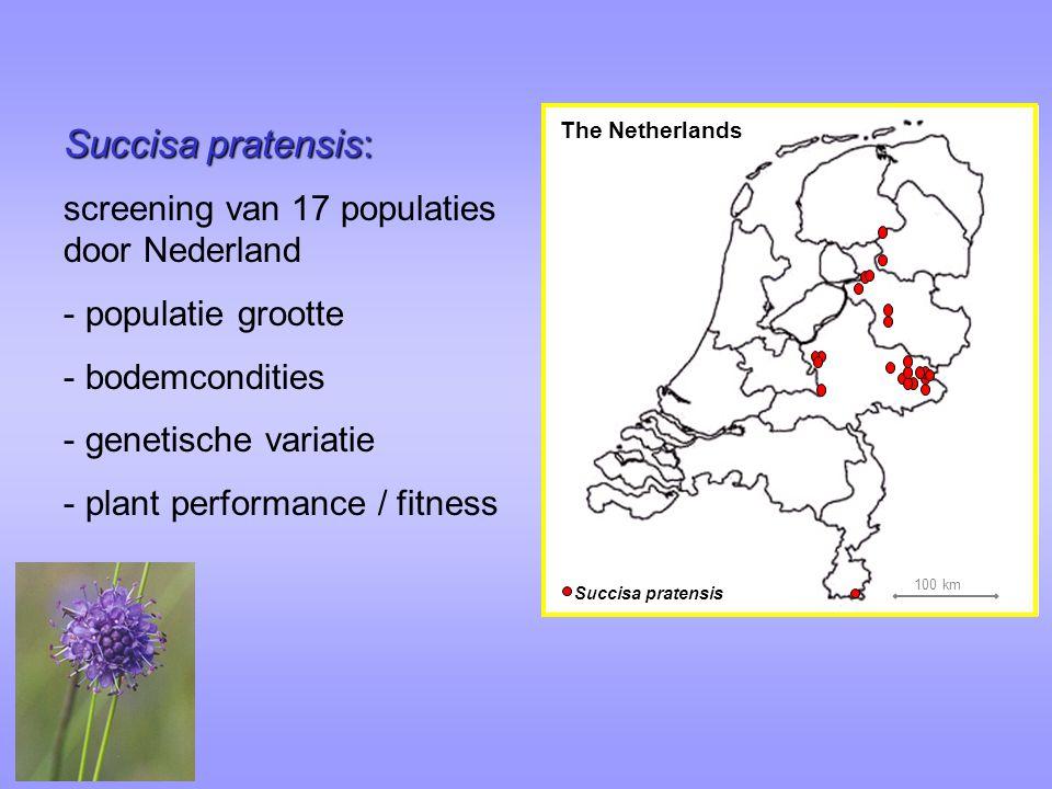 Succisa pratensis: screening van 17 populaties door Nederland