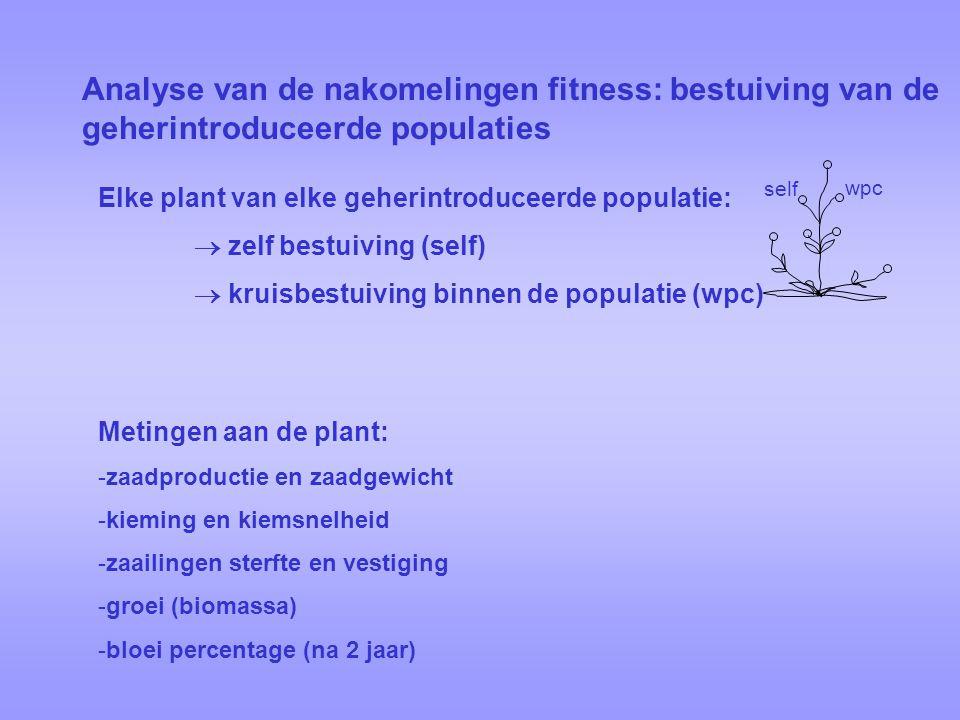 Analyse van de nakomelingen fitness: bestuiving van de geherintroduceerde populaties