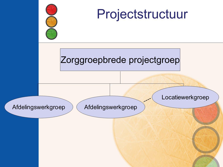 Zorggroepbrede projectgroep