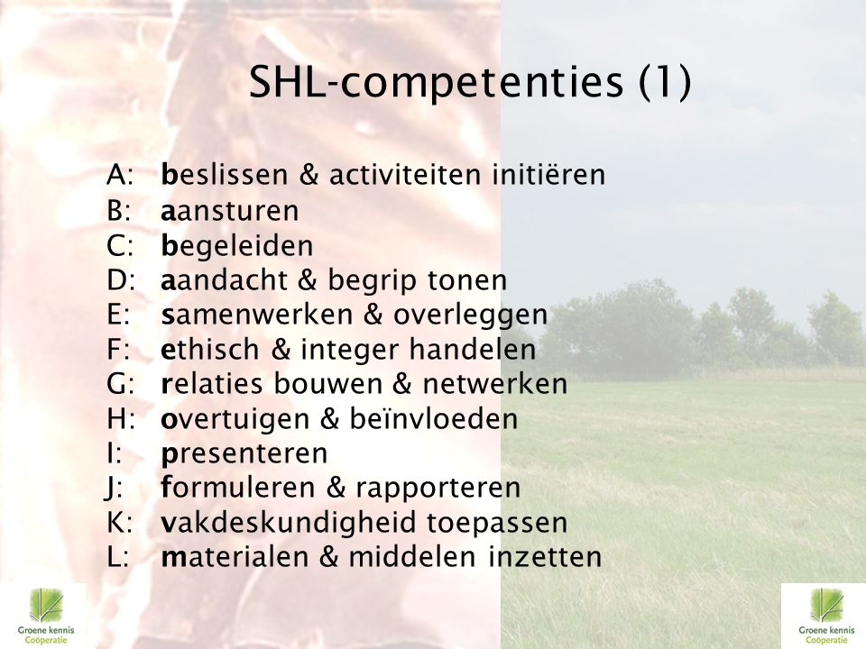 SHL-competenties (1)