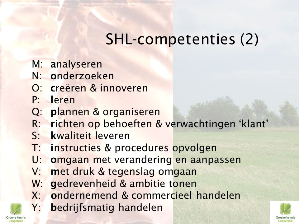 SHL-competenties (2)
