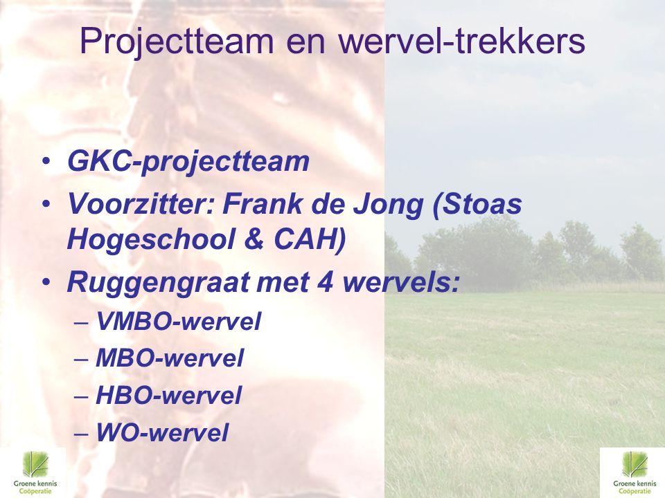 Projectteam en wervel-trekkers