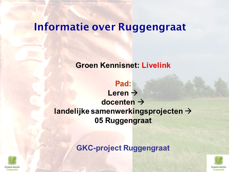 Informatie over Ruggengraat